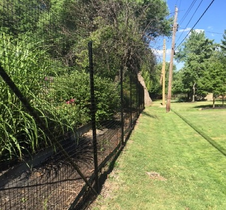 We Are Praised As The Countryu0027s Best Deer Fence System And Installers.  Visit Www.deersolutions.org For More Information.